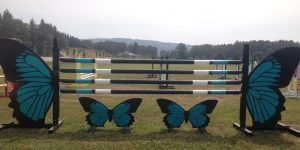 Butterfly Jump